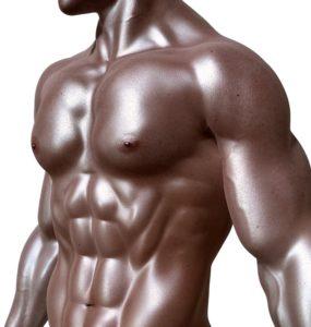 Bodybuilding Diet of the Pros | Romanyrest